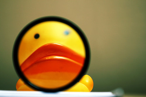 Rubber Duck — Photo by Dave Rutt