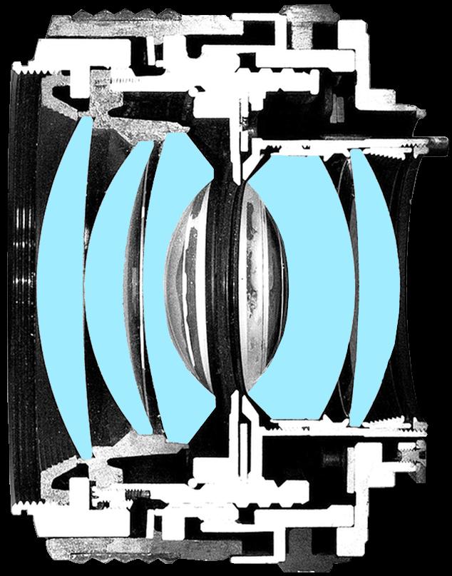 Prime lens catout — photo by Janne Moren
